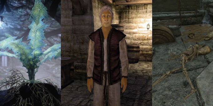Skyrim Confirms Oblivion's Obsessive Nirnroot Quest-Giver's Fate