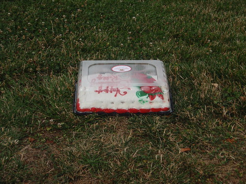 cake in the grass (1)