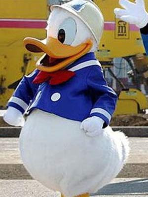 Pato Donald Recebe 120 Votos