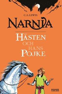 Hästen och hans pojke (storpocket)