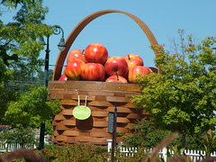 Outside apple basket
