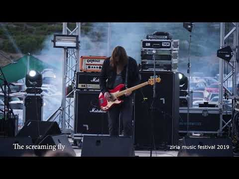 [Videotheque] The Screaming Fly - ASTRO (Ziria Festival 2019)