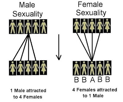 http://masculineprinciple.blogspot.ca/2015/03/sex-sells-hypergamy-explained.html