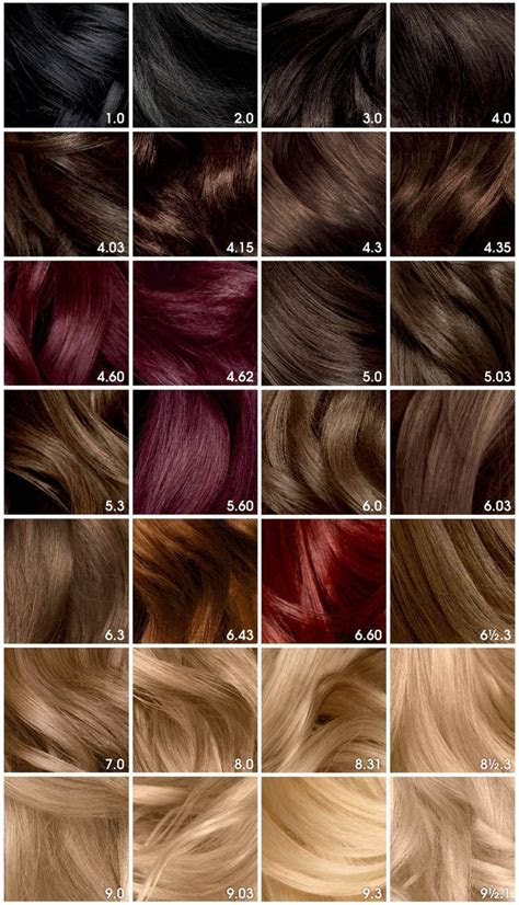 garnier olia brilliant color hair color chart brunette hair color