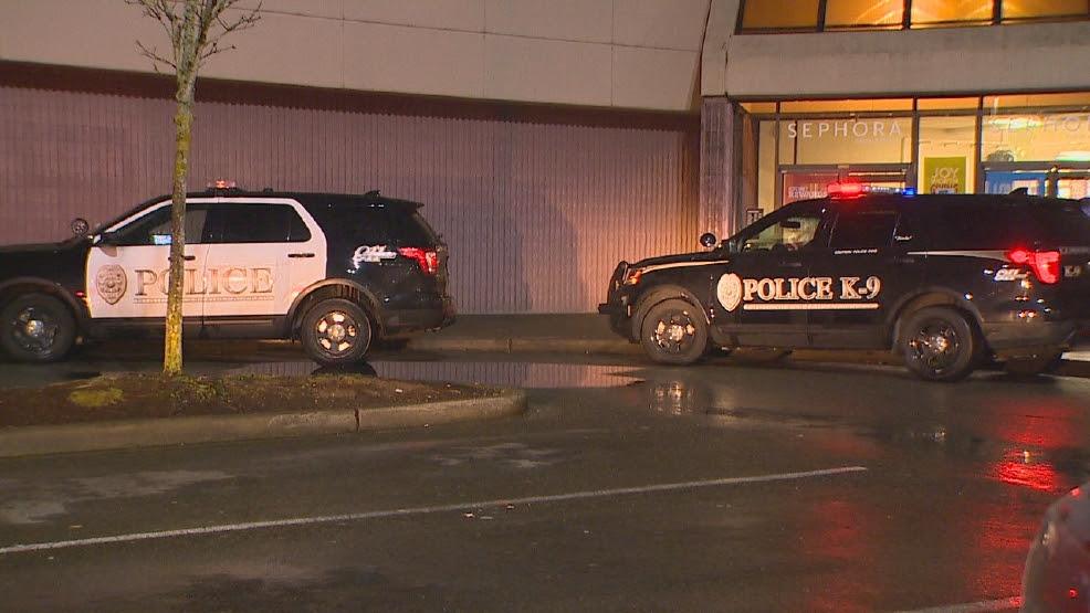 Image result for alderwood mall stabbing
