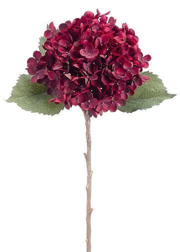 Burgundy Hydrangea Stem   Fall Wedding Flowers   Afloral.com