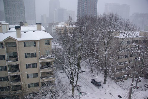 2008-12-18 Snopocalypse Seattle (10)