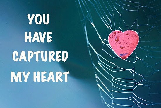 You Have Captured My Heart Quote Picture