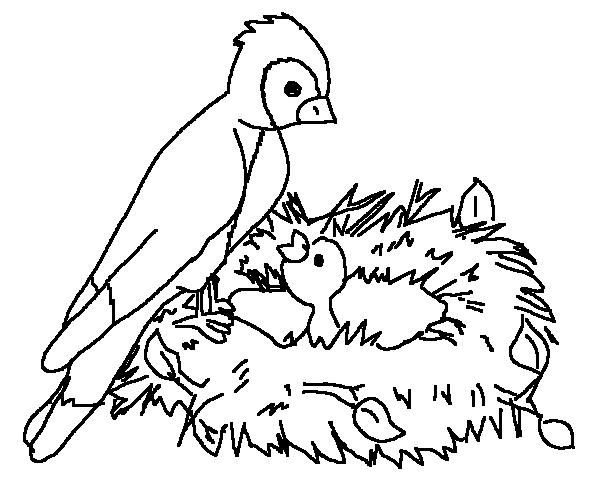 Ham And Eggs Ranch Coloring Page