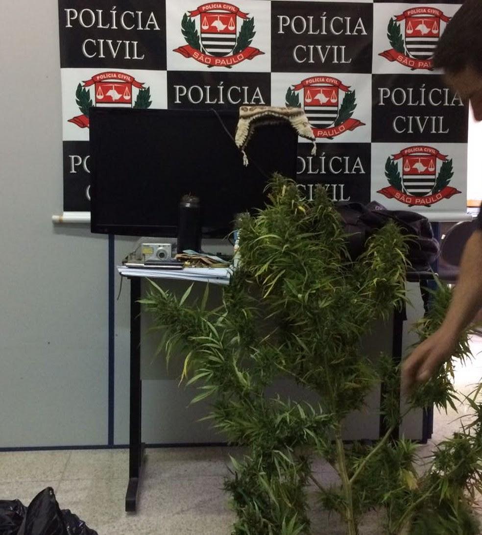 Com um dos integrantes, foram achados pés de maconha, objetos roubados e documentos. (19). (Foto: Pedro Melo/TV Vanguarda)