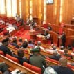 9th National Assembly and the leadership question