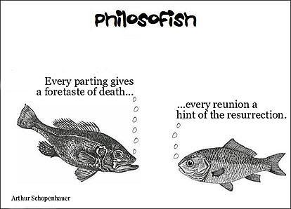 philosofish 13 small
