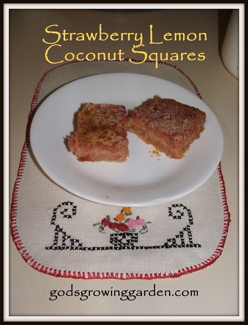 Strawberry Lemon Coconut Squares by Angie Ouellette-Tower for godsgrowinggarden.com photo 009_zps9418f63f.jpg