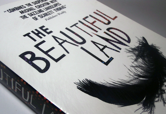 The Beautiful Land book cover
