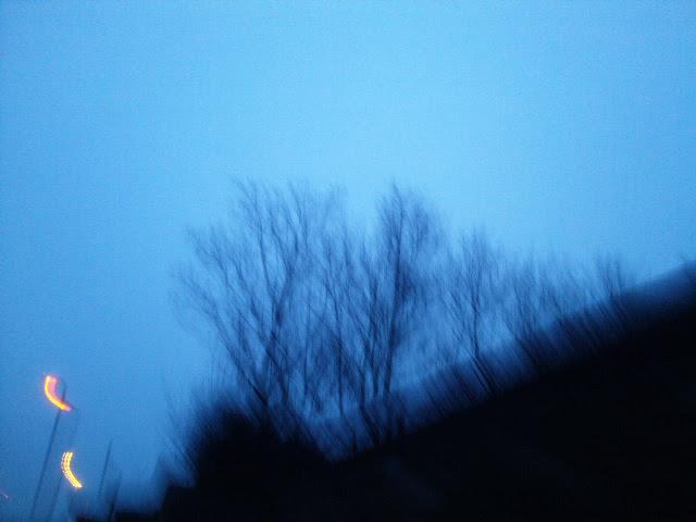 PIC_6055