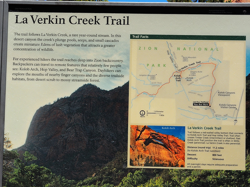 DSCN0089 Kolob Arch/La Verkin Trail, Zion National Park