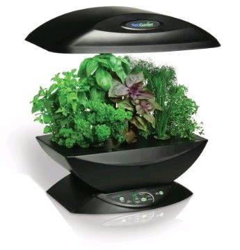 Grow Your own indoor Vegetable Garden | Green Eco Services