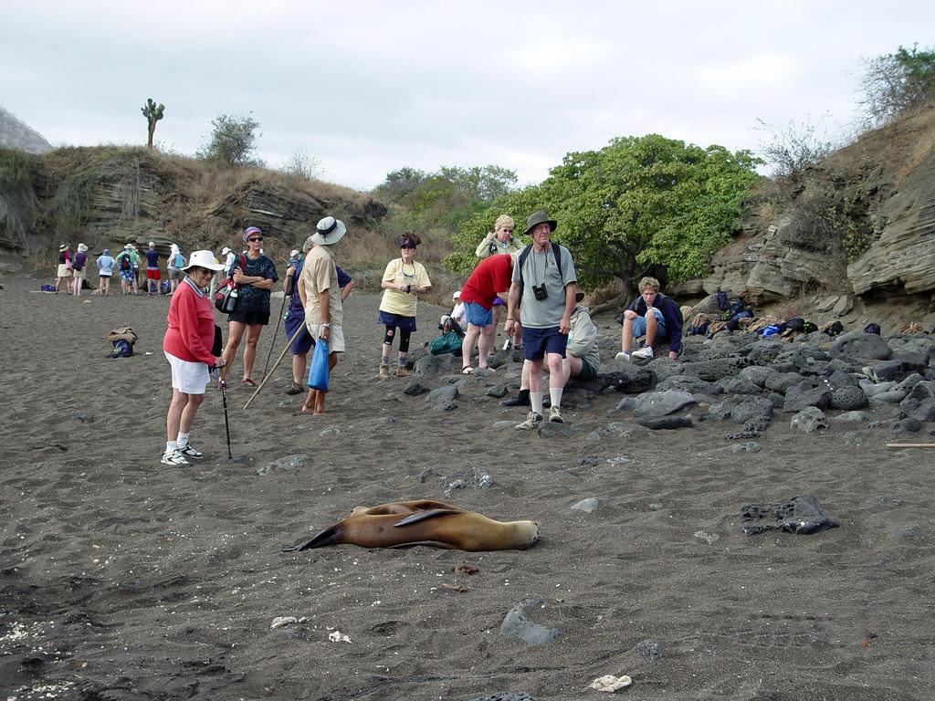 DSC00843 tourists at Las Bachas Beach