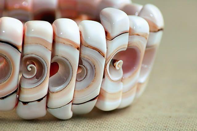 Shell Bracelet [enlarge]