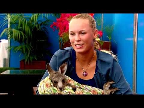 Caroline Wozniacki e il canguro