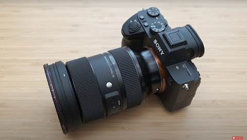 A Review of the Sigma 24-70mm f/2.8 DG DN Art Lens