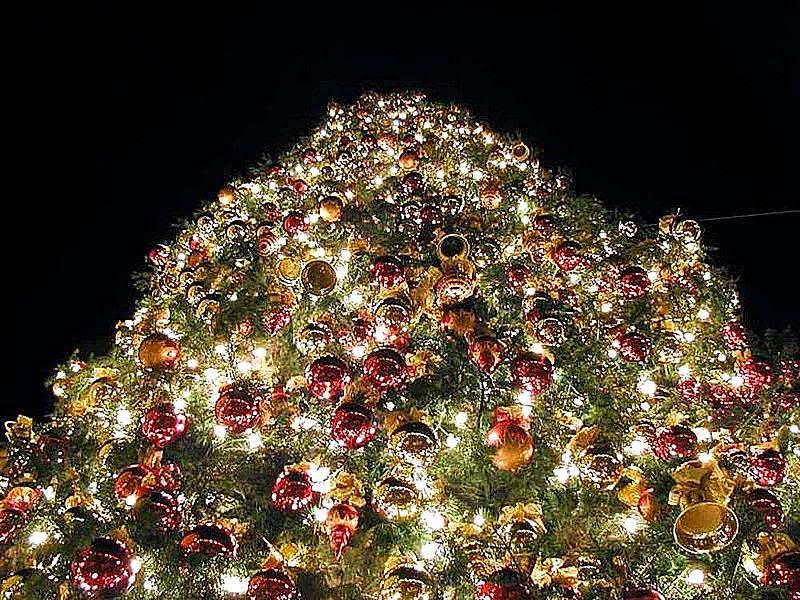 File:Christmas trees orniments.jpg