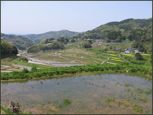 01 Tanada April 30, 2009