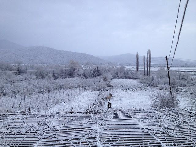 December in Pona Khechili
