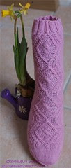 Eglantine socks - first done