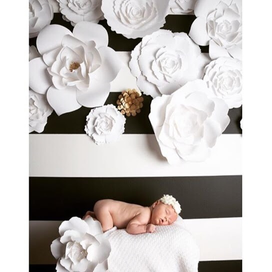 Large Paper Flowers For Weddingsevents And Home Decor Paperflora