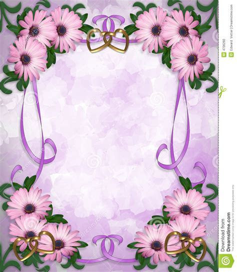 Daisy Border Wedding Invitation Stock Photo   Image: 4706260