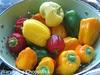 Homegrown Heirloom Bell Peppers