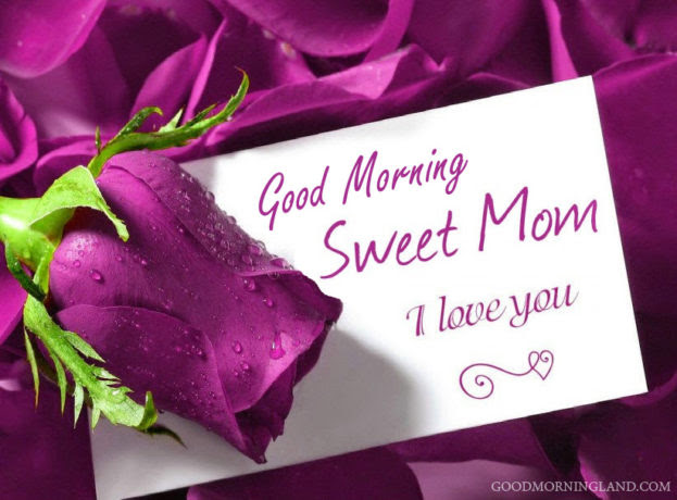 Good Morning Mom I Love You Good Morning Images Quotes Wishes