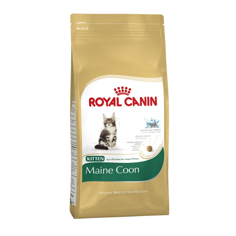 Buy Royal Canin Maine Coon Kitten Food 10kg