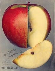 pomme apple draeg