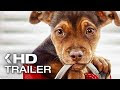 Movie Review A Dog's Way Home 2019