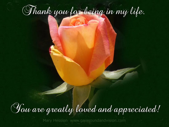 Thank You For Being In My Life Free Flowers Ecards Greeting Cards
