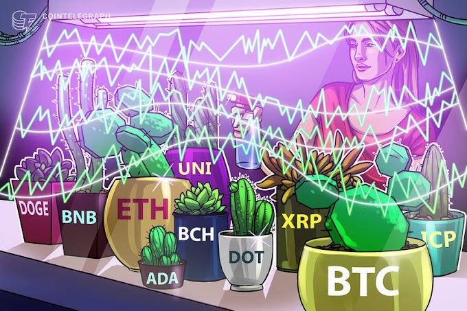 Price analysis 6/7: BTC, ETH, BNB, ADA, DOGE, XRP, DOT, UNI, ICP, BCH