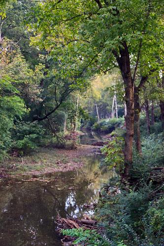 Beginning of Fall on Stewart Creek by susanc59