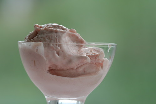 Rhubarb ice cream / Rabarbrijäätis