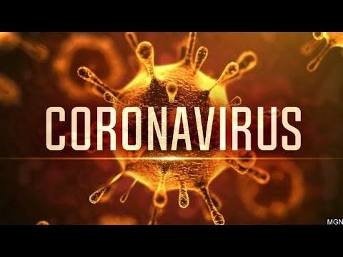 My Top Suspicions Of The Coronavirus (COVID-19)