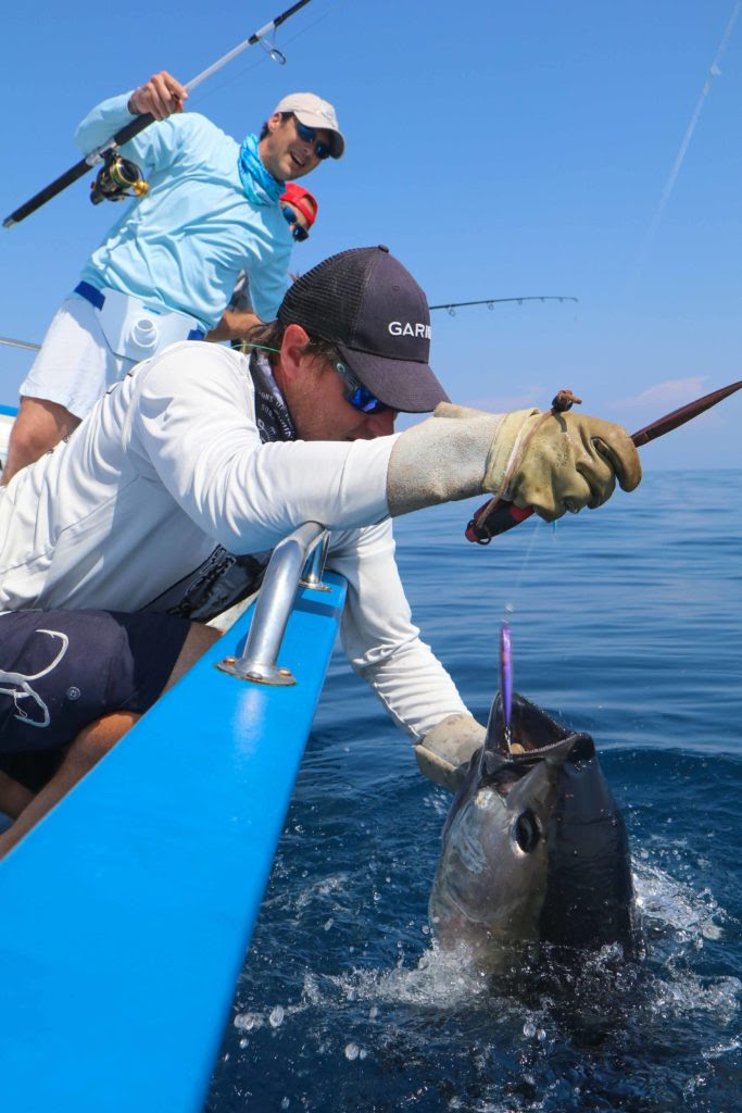 Guidage pêche au thon avec Cyril GRESSOT