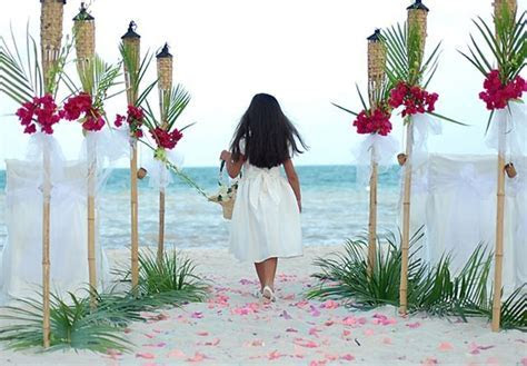 20  best ideas about Luau Wedding on Pinterest   Tropical