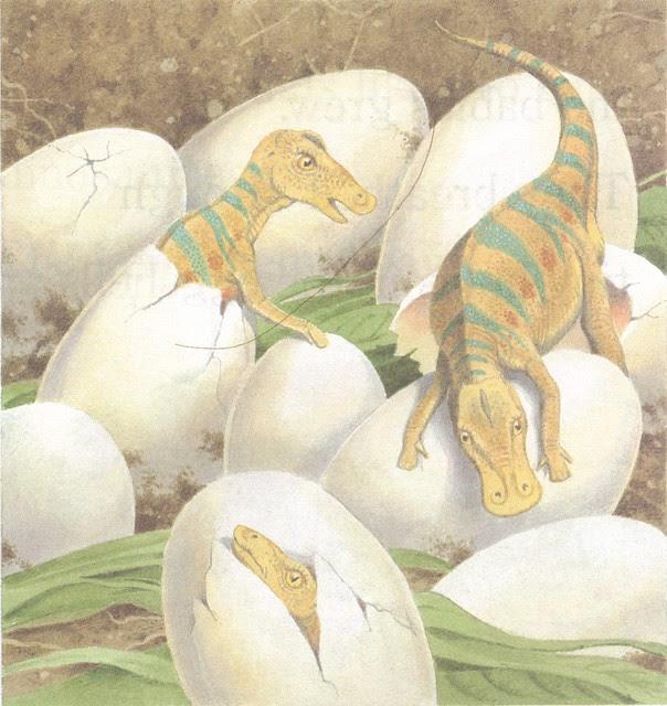 Maiasaura Babies