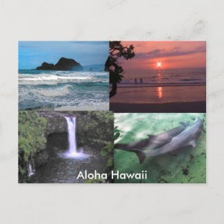 Hawaiian Collection postcard