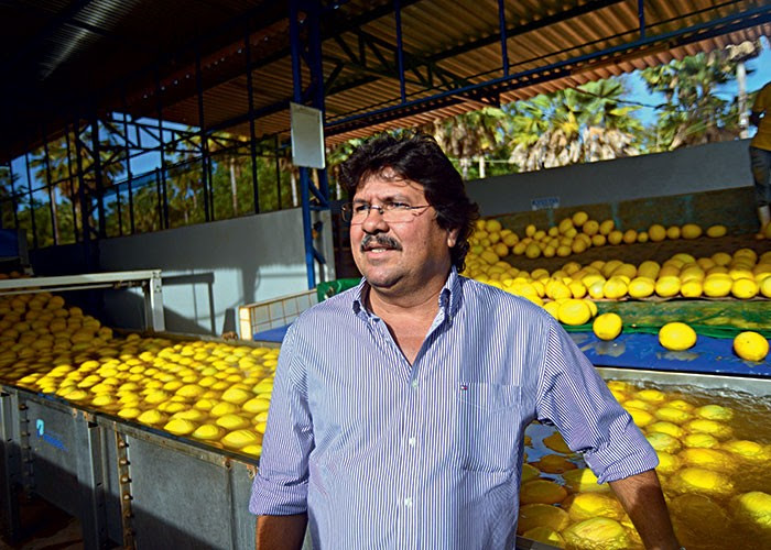 agricultura_frutas_sertao (Foto: Ernesto de Souza/Ed. Globo)