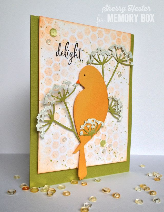 Delight with Bird - 3
