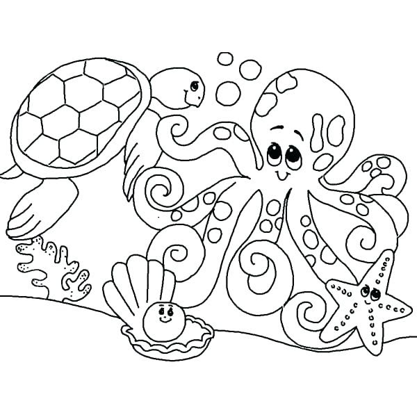 6000 Top Ocean Animals Coloring Pages Kindergarten Download Free Images