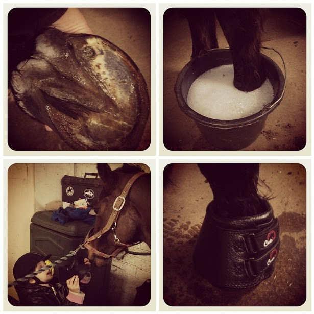 7/3.2012 - how to treat a hoof abscess