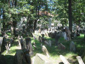 Vieux cimetière juif de Prague 5768
